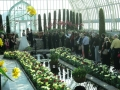 Puttkammer wedding 4